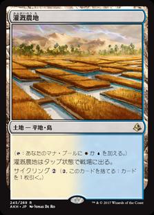 灌漑農地.jpg